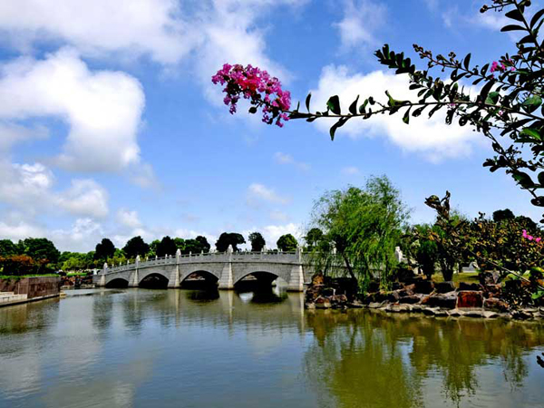 """上海墓园以融合与转变造就""""六地"""""""