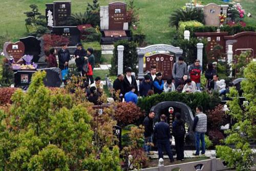 上海墓地2016年清明祭扫达884万人次