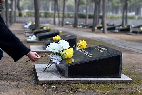 墓地使用年限20年说法有误