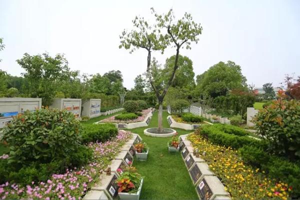 """把墓地做成小花园,上海福寿园墓地的""""节地葬花园""""图片"""