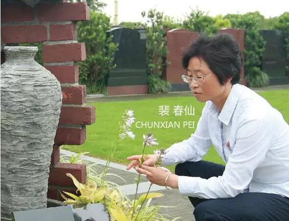 上海墓地滨海古园